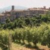 Il vin santo di Vigoleno tra i tesori nascosti dei borghi italiani