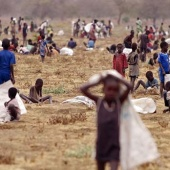 "Sud Sudan: Fao, ""carestia mai vista. Colpiti in 5 milioni"""